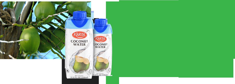 coconut1_content