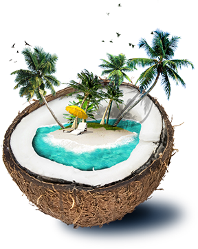 coconut_animation