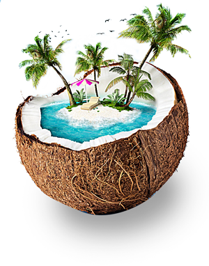refresh_coconut